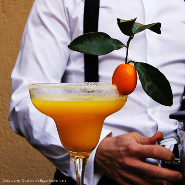 Taller Cocteles - Just Royal Bcn